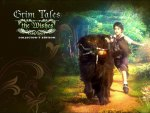 Grim Tales - The Wishes Collectors Edition03