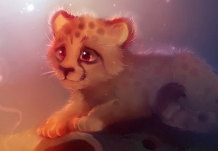 A very beautiful cheetah # - sd, y, i, rert