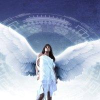 Desperate Fallen Angel