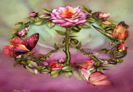 Peace Rose - fantasy, other, butterflies, roses, abstract
