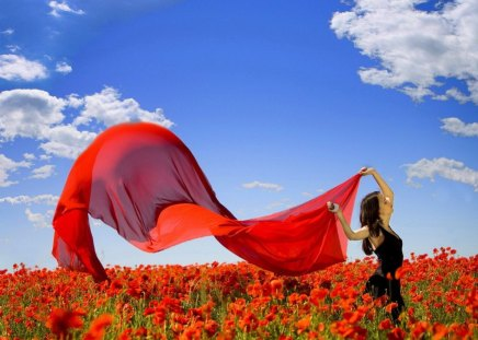 Wind of freedom - fresh, joy, freedom, red, poppies, meadow, woman, lady, brunette, sky, nice, summer, nature, vail, beautiful, lovely, girl, clouds, field, wind