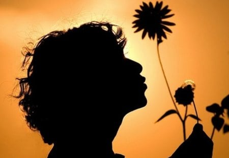 Good Morning - collage, child, morning, silhouette, flower
