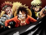 Eustass Kid, Monkey D. Luffy, Trafalgar Law