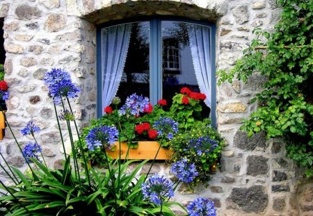 Home, sweet home - fresh, colorful, flowers, curtain, nice, summer, sweet, beautiful, lovely, fragrant, stones, pretty, cottage, house, home, window