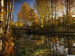 great autumn riverscape