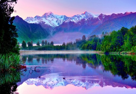 MOUNTAIN LAKE - forest, new zealand, mountains, ducks, reflection, sky, lake, fog