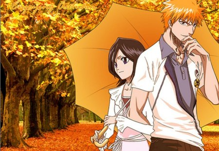 IchiRuki - bleach, battle, shinigami, kill