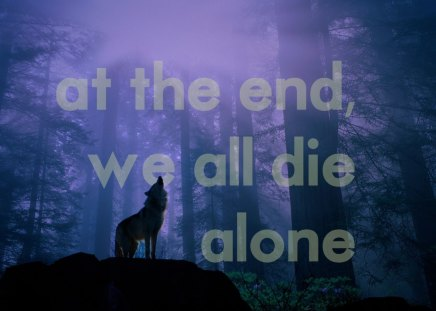 quotes,wolves - forest, wolf, wolves, andscapes, quotes, solitude, despair, howling