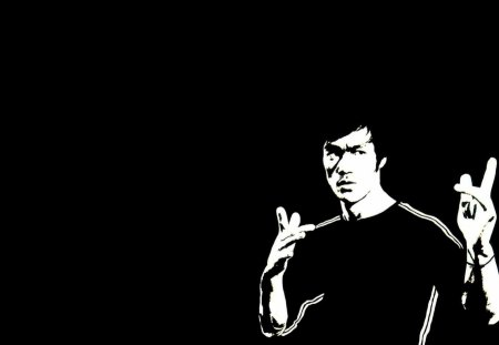 Bruce Lee - bruce, dragon, lee, bruce lee
