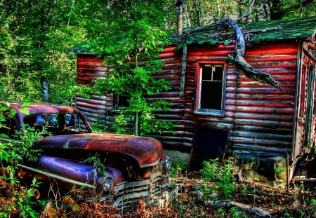 By the Wooden Shack - greenery, forest, shack, antique, car, rusty, lush