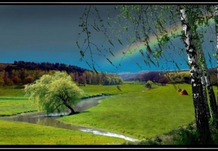 precious rainbow - tree, grass, field, landscape