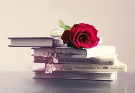 This is the humanity... - rose, love, books, red, red rose, forever, humanity