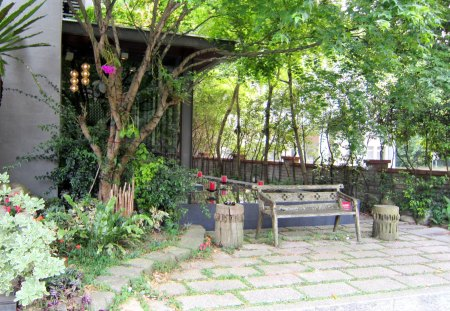 hot spring area restaurant - tree, wood chair, restaurant, hot spring