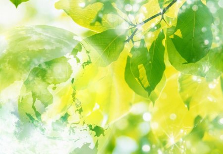 Transparent Globe, green leaves and sparkling sunlight - globe, nature, leaves, green