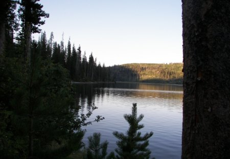 Peaceful Evening - forest, calm, evening, idaho, lake