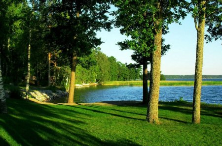 Beautiful Lake Green Grass Trees Lakes Nature Background