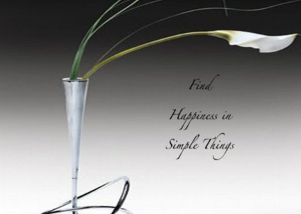 Find happiness in simple things - sense, wallpaper, happiness, words, things