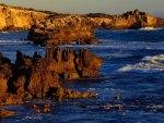 Australia's Boozy Gully Coastline