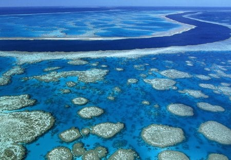 Australia's Great Barrier Reef - beauty, reefs, nature, coral