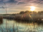 sunset on a marsh in bieslandse netherlands hdr