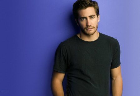 Jake-Gyllenhaal - gyllenhaal, male, jake, actor
