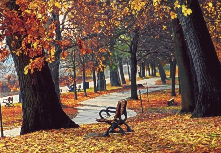 Autumn Park - fall, leaves, bench, path, trees