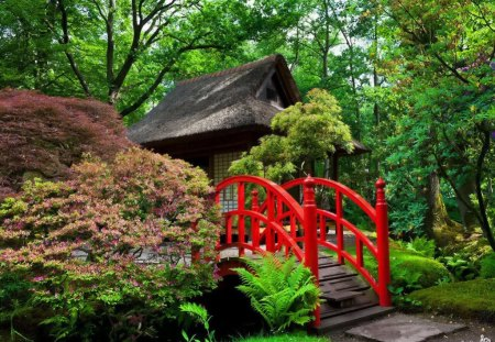 Japanese garden - colorful, grass, peaceful, harmony, stream, red, forest, calm, japanese, bridge, water, nice, summer, nature, trees, beautiful, greenery, lovely, river, pretty, green, bushes, garden, leaves