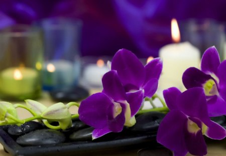Heavenly scent - heaven, treatment, relax, candle, flame, rest, fragrant, paradise, violet, flowers, spa, nice, scent, beautiful, lovely, pretty, still life, delicate