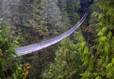 Long bridge - mountain, bridge, high, nature, landscape