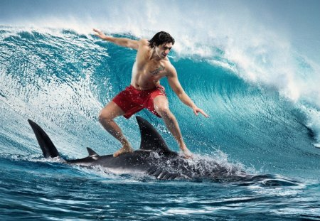 Shark surfing - art, shark, water, guy, surfing, sea, blue, wave