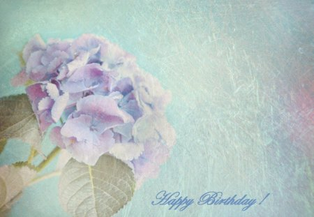 ~ ♥ღ Happy Birthday Purple-Haze ღ♥ ~ - birthday, friend, flower, wishes