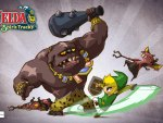 a fight with toon link !!!