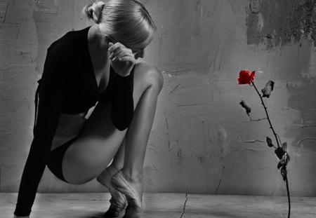 adoration - ballerina, wall, red, rose