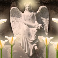 ♥     Angel of Light     ♥