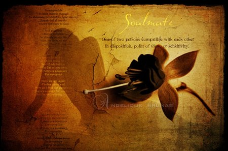 Soul mate... - texture, quote, rose, silhouette