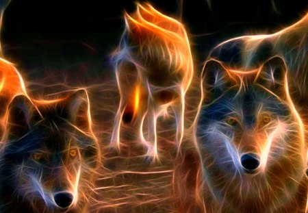 Wolf Pack - abstract, art, digital, beautiful