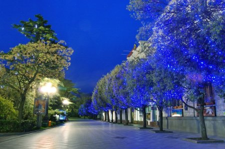 Yalta - yalta, night, blue, tree