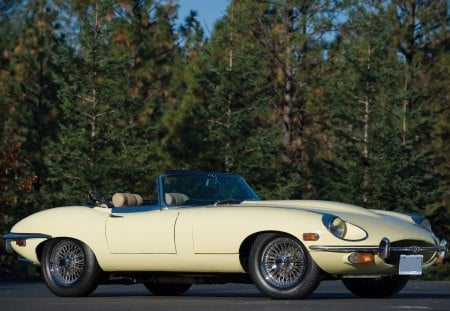 1969 Jaguar E-Type Roadster Series II - ii, type, 69, old, antique, 1969, etype, series, car, convertible, jaguar, e-type, classic, roadster, vintage, 2