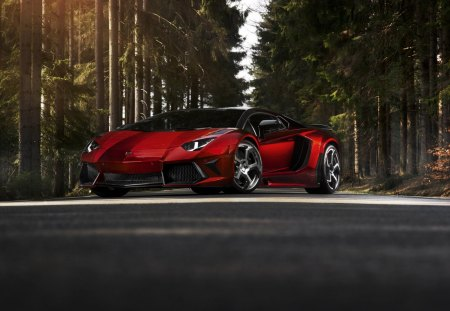 Lamborghini - sports cars, forest, mansory, cars