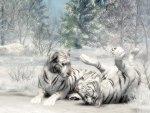 Playful Siberian Tiger