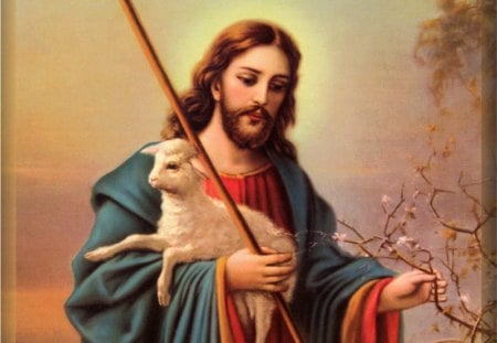 Jesus, the Good Shepherd - christ, jesus, savior, love, lamb, lord, shepherd, god