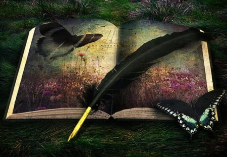 enchanted - texture, butterflies, abstract, feather, book