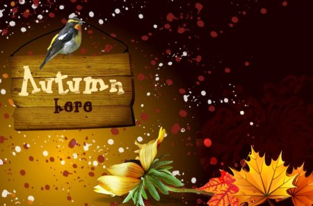Autumns Here - fall, fleurs, sprinkles, autumn, brown, orange, sign, scatter, leaves, gold, bird, amber, bright, flowers
