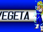 Super Saiyan 3 Vegeta