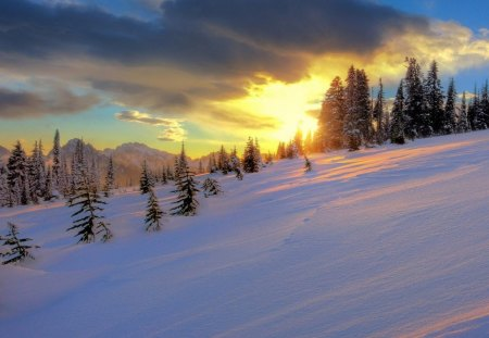 wonderful winter sunset - hill, sunset, winter, clouds, trees