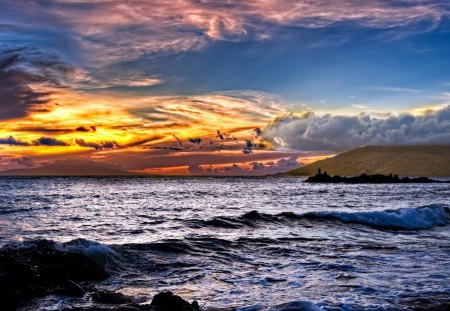glorious sky - fishing, sunset, clouds, sea, rocks