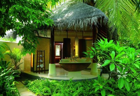 jungle living - romantic, photography, green, jungle, trees
