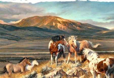 Wild Horses F5 - Horses & Animals Background Wallpapers on ...