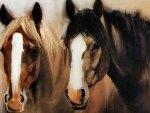 2 Pals - Horses F2
