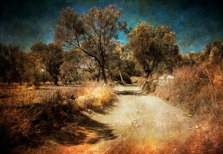 road less traveled - autumn, road, photography, nature